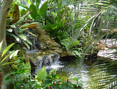 มาจัดสวนให้สวย ๆ กันด้วยเทคนิคทำให้บ้านและสวนให้เขียวๆกันนะครับ