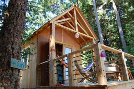 แบบบ้านไม้ กระท่อมกลางป่า