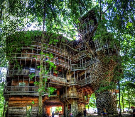 แบบบ้านไม้ บ้านต้นไม้ ขนาดใหญ่