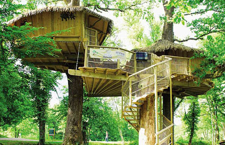 แบบบ้านไม้ บ้านต้นไม้ น่าอยู่